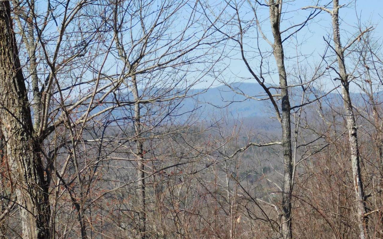 LT 23 Deer Valley - Photo 1