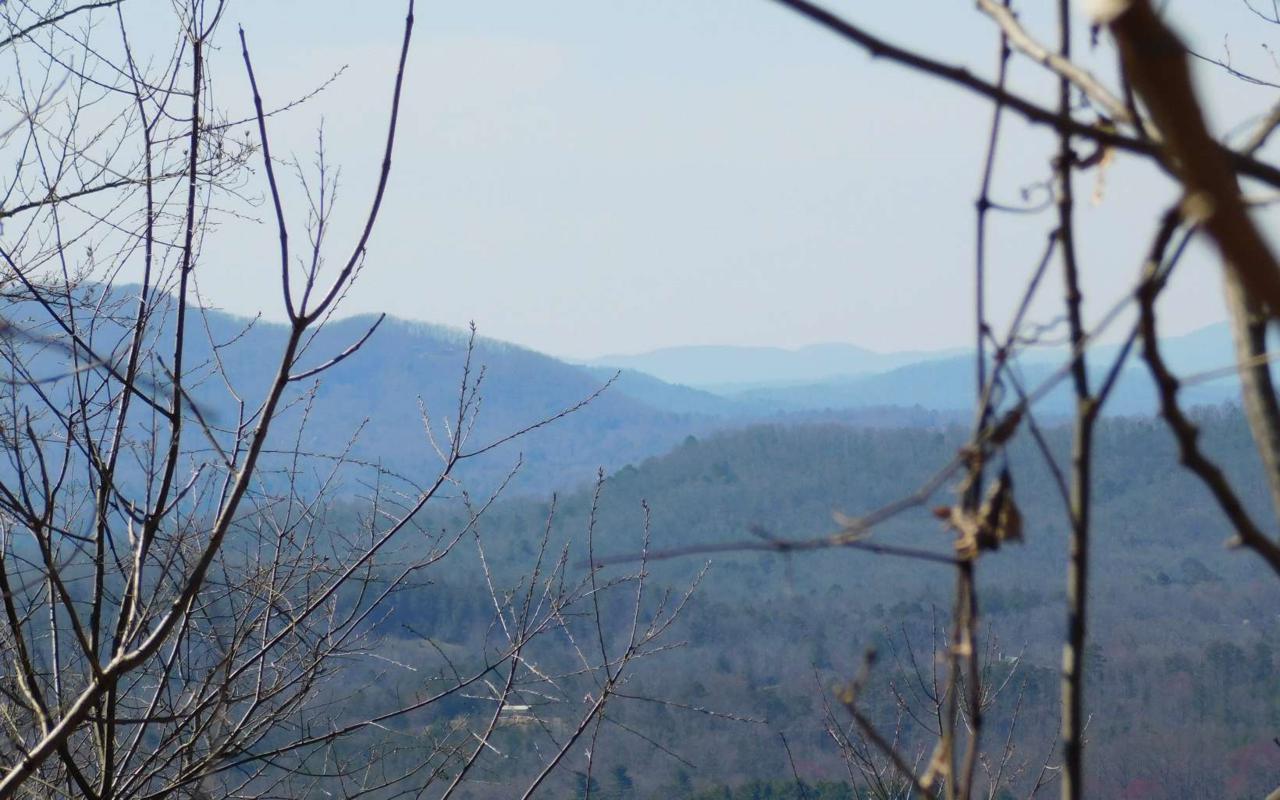 LT 24 Deer Valley - Photo 1