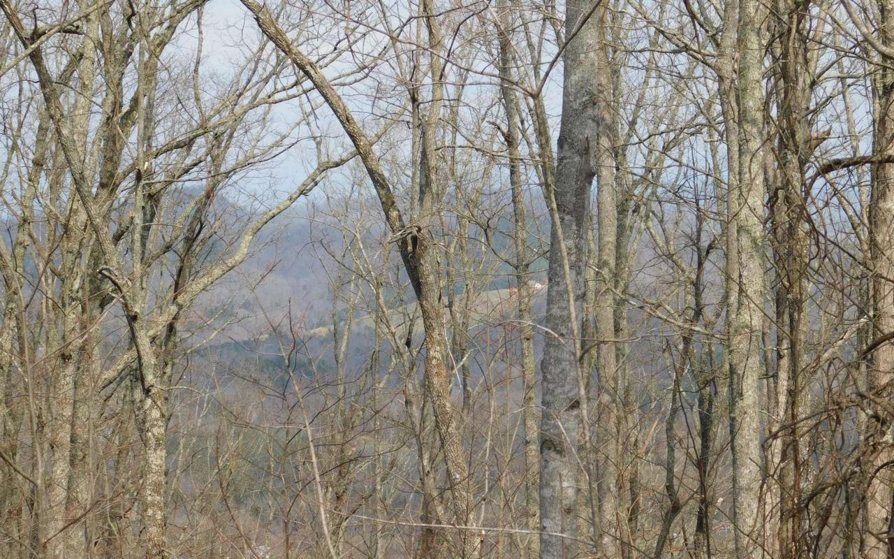 LT 29 Deer Valley - Photo 1