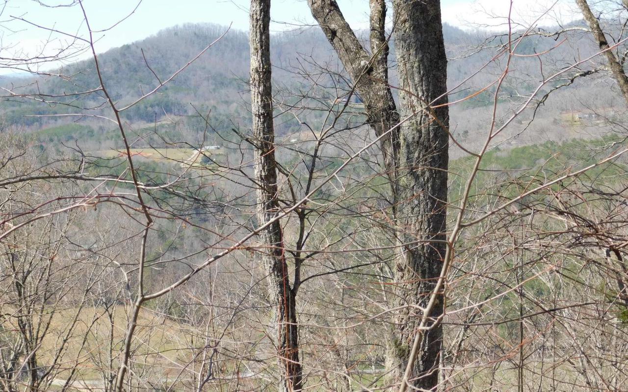 LT 32 Deer Valley - Photo 1