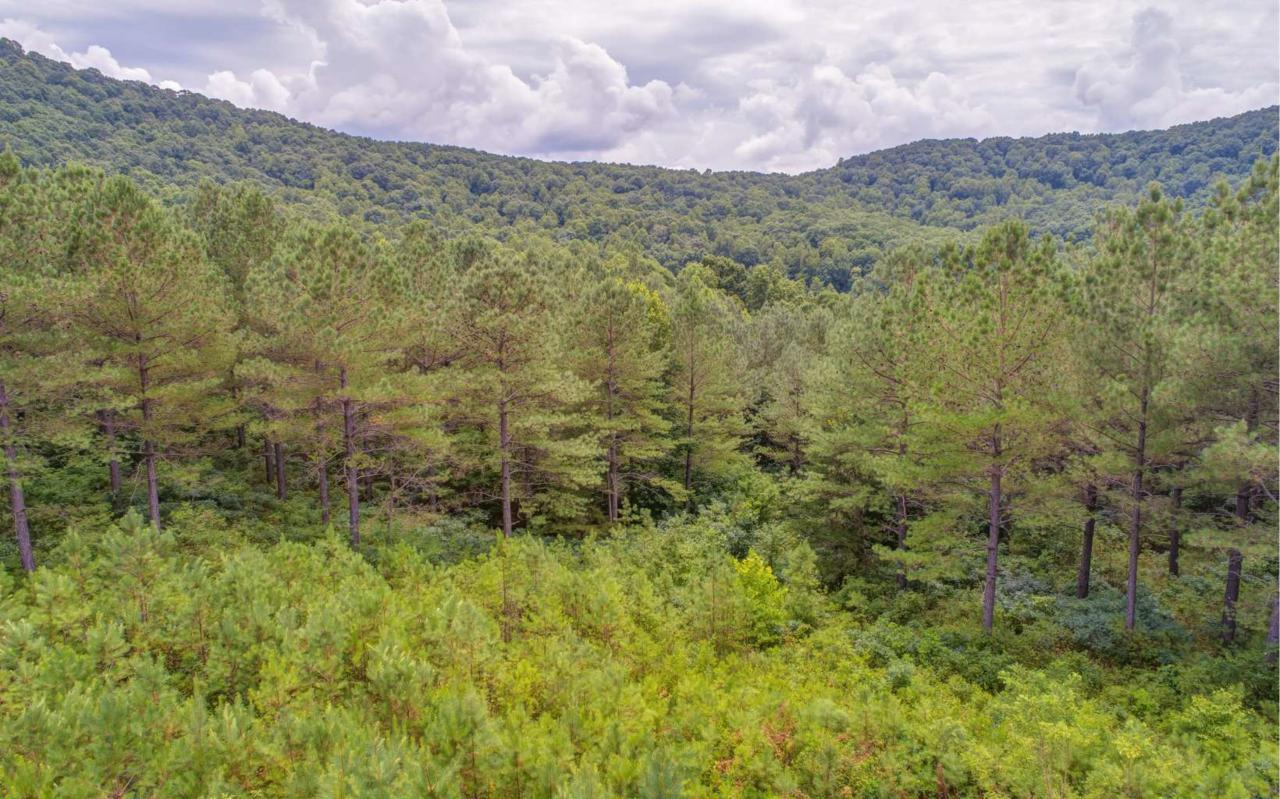 LOT10 Eastview Trail - Photo 1