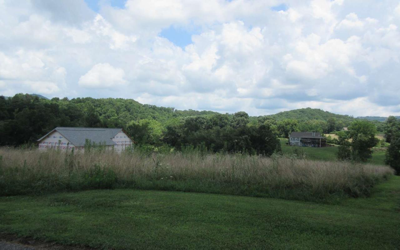 LOT 3 Brasstown Creek Mead - Photo 1