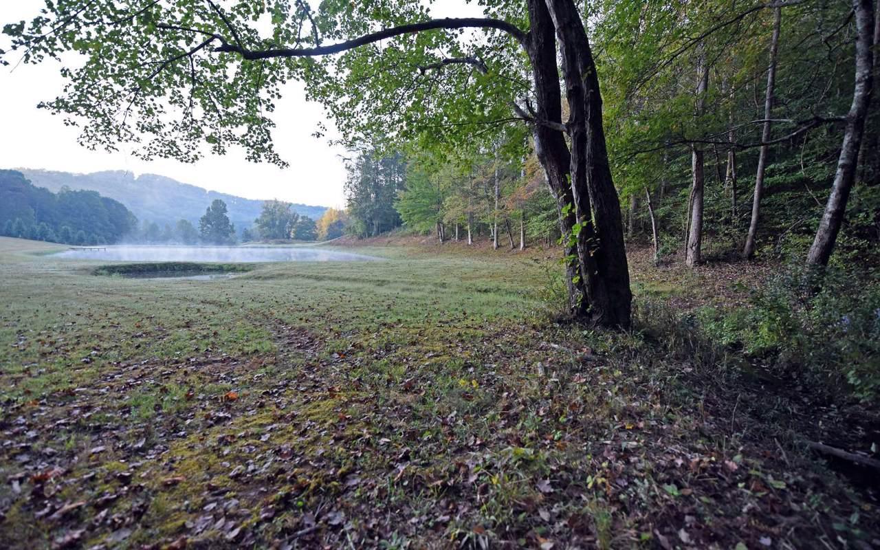 LOT44 Smokey Mtn. Estates - Photo 1