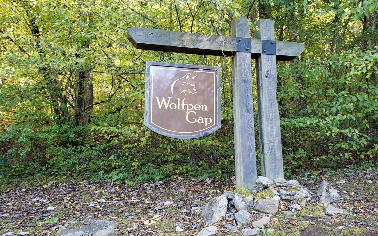 LOT 9 Wolfpen Gap - Photo 1