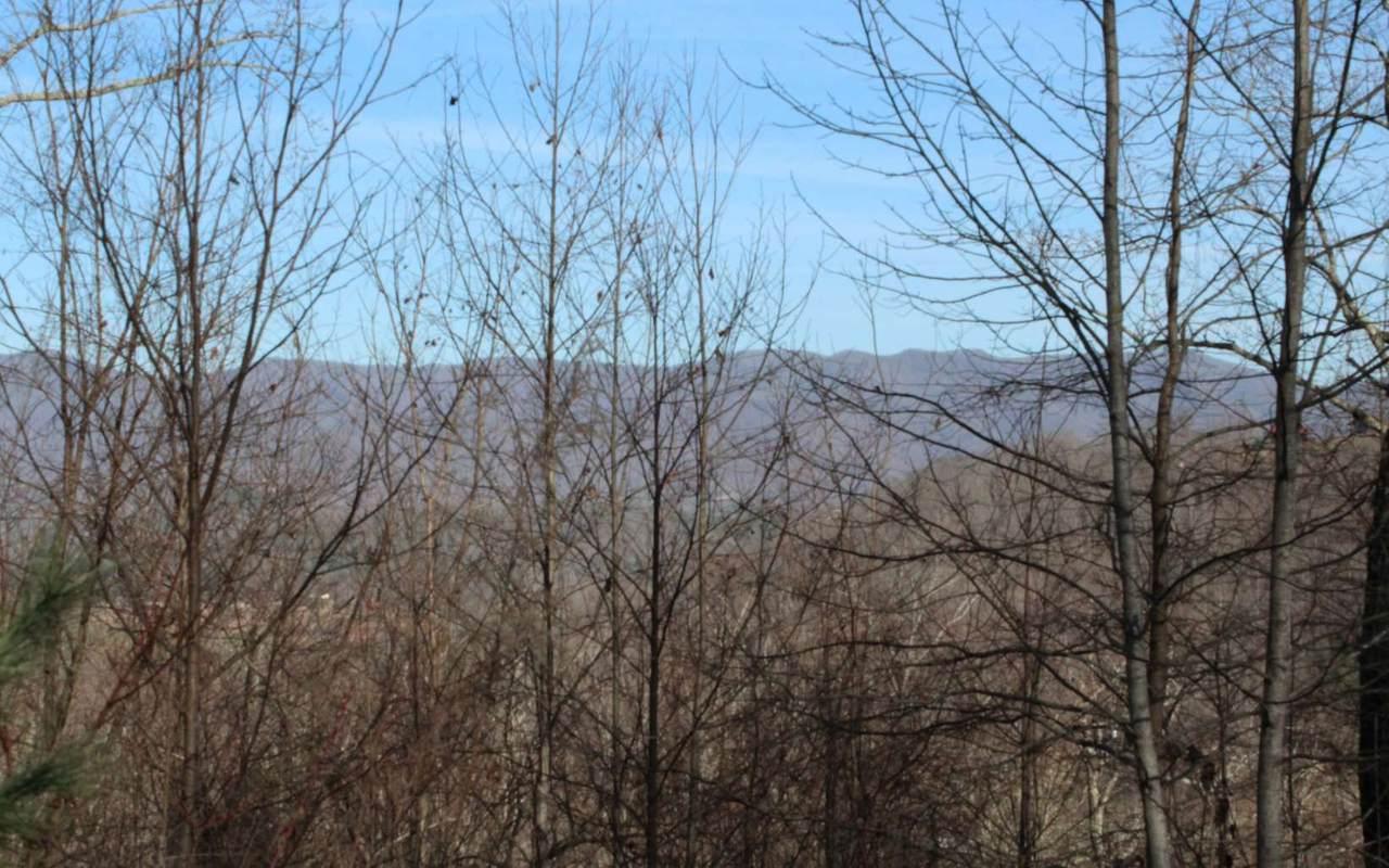 141 Shiloh Ridge - Photo 1