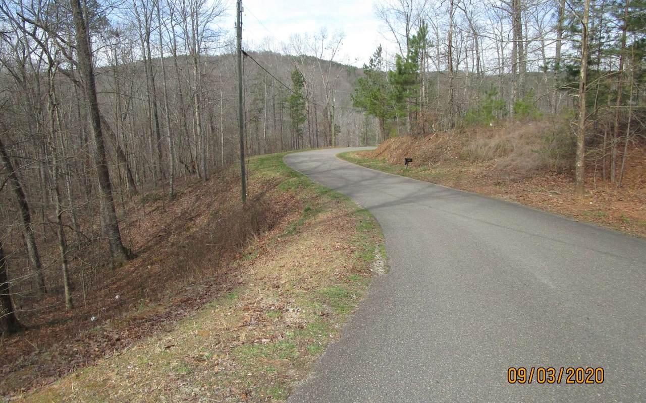 23 Wildcat Creek Road - Photo 1