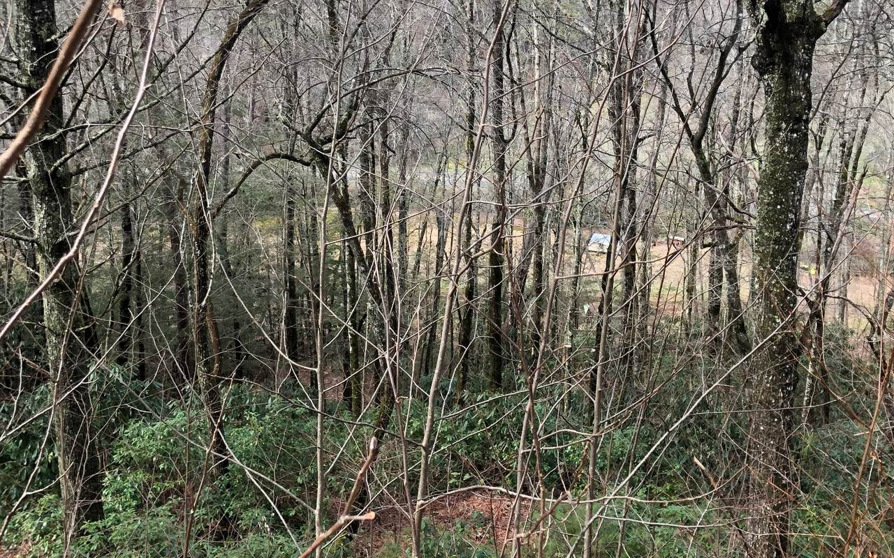 LT 53 Stone Ridge Trail - Photo 1