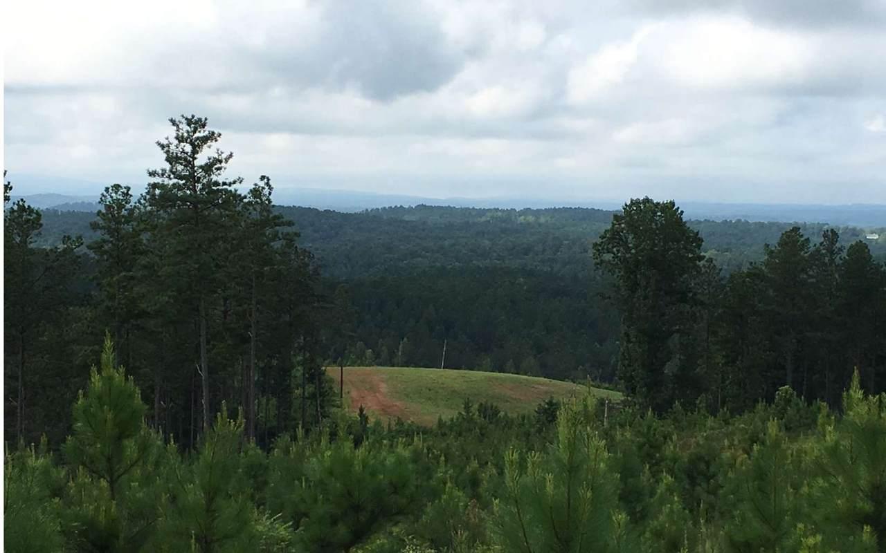 0 Log Round Mountain - Photo 1
