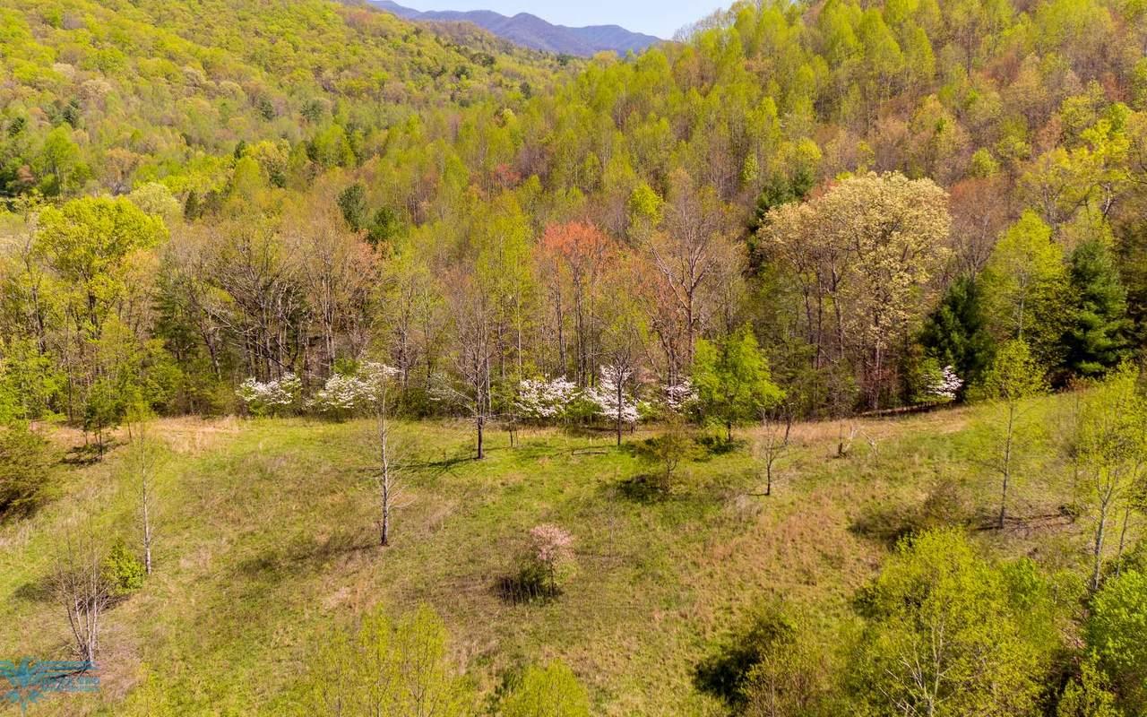 Downings Creek - Photo 1