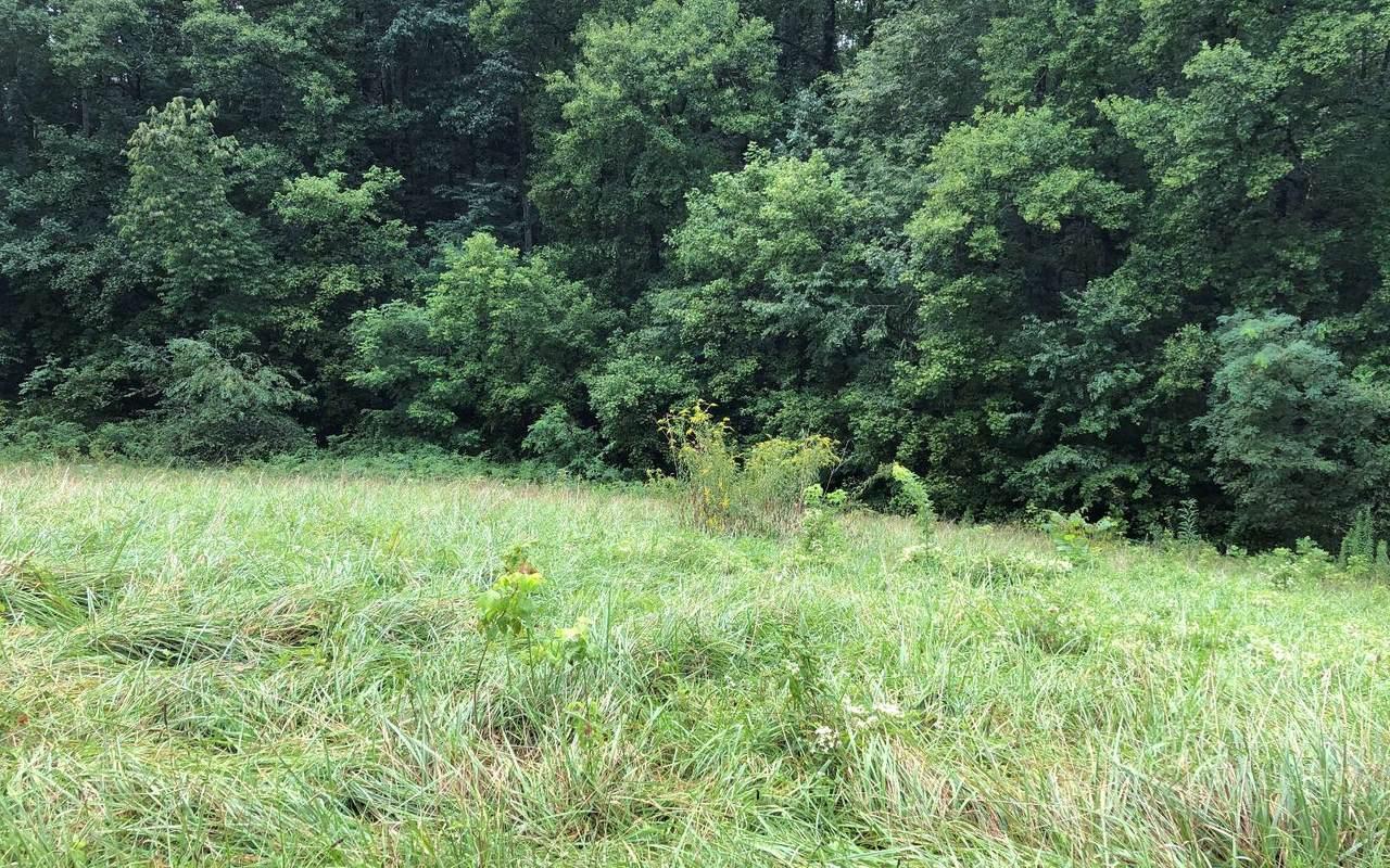 LT 5 Mission Hills Estate - Photo 1