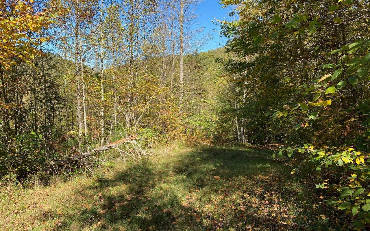 8 AC Cold Branch - Photo 1