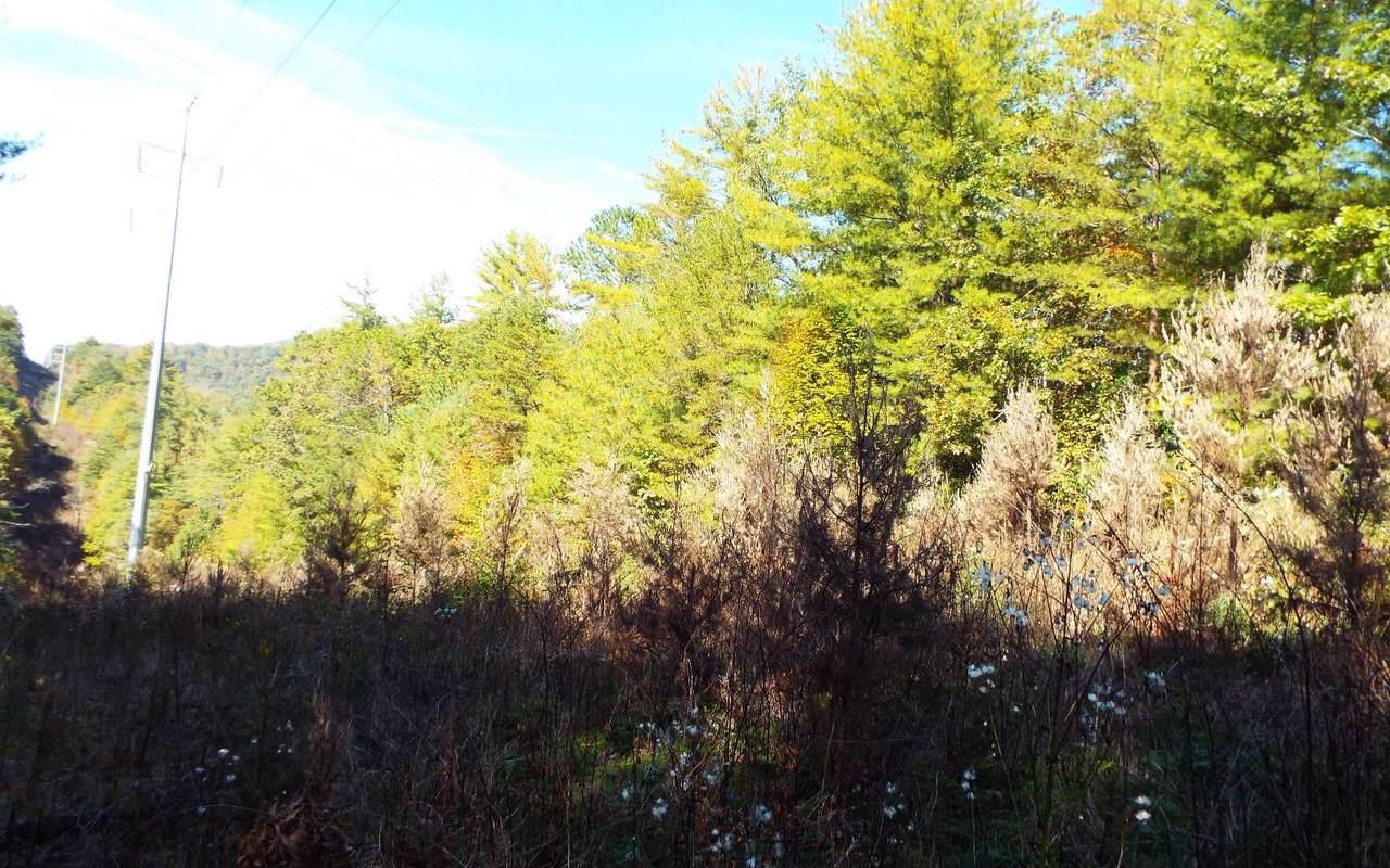 Tbd Fires Creek Road - Photo 1