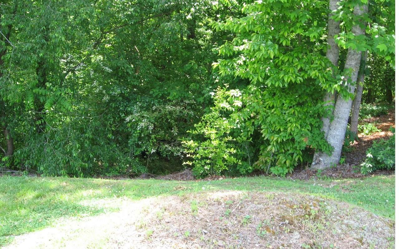 L 91 Blue Ridge Village - Photo 1