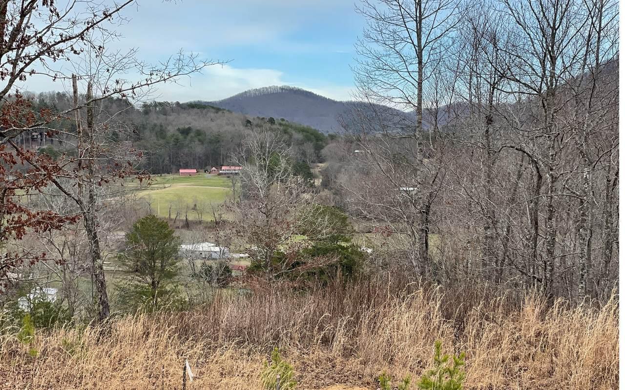 2 Brannon Ridge Res. - Photo 1