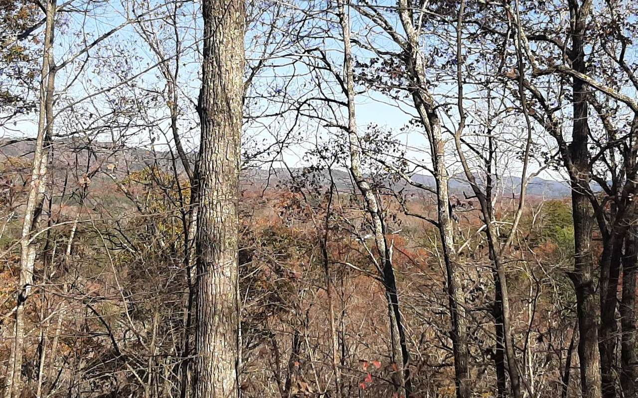Shinbone Mountain - Photo 1