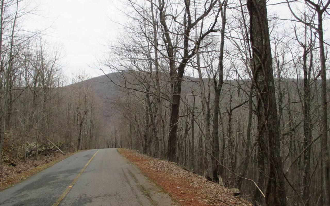 LT 56 Rimrock Road - Photo 1