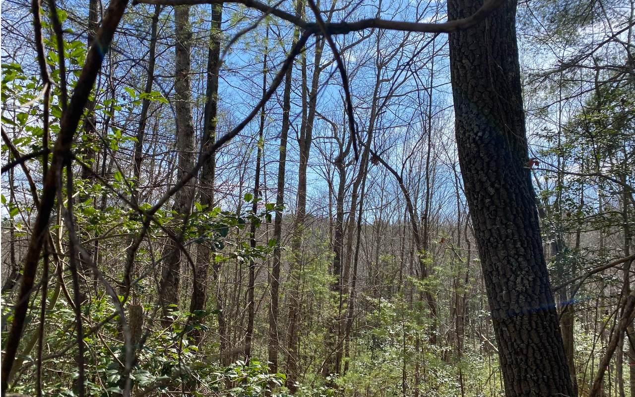 Natures Way Lot 4 - Photo 1