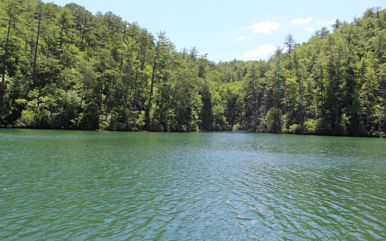 17 Wilderness Lake Circ - Photo 1