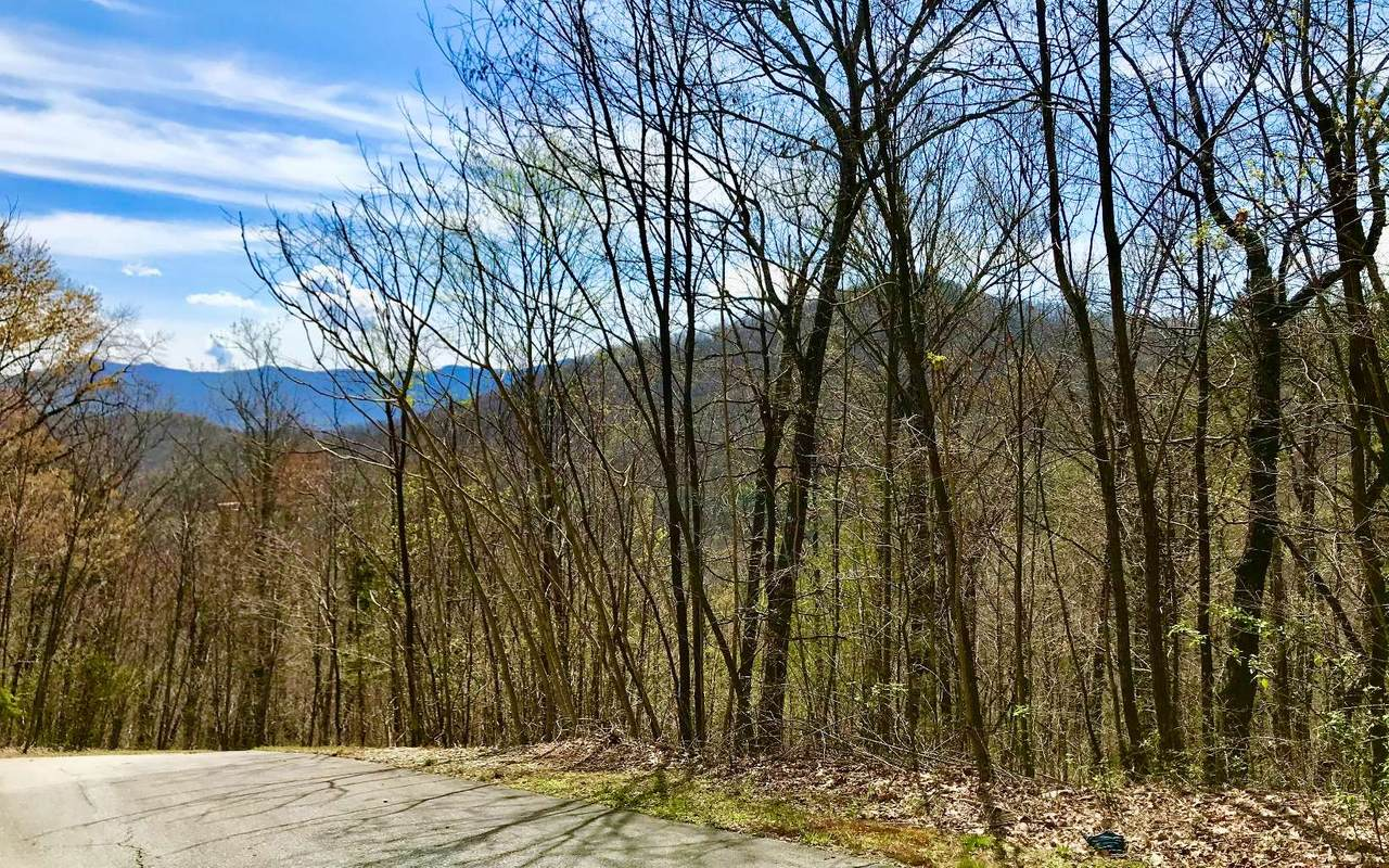 LT 50 Overlook Trail - Photo 1