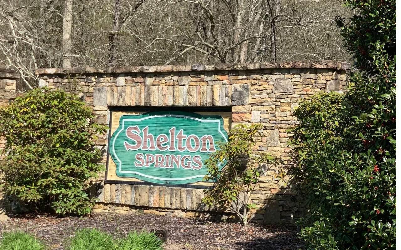 21 Shelton Springs - Photo 1