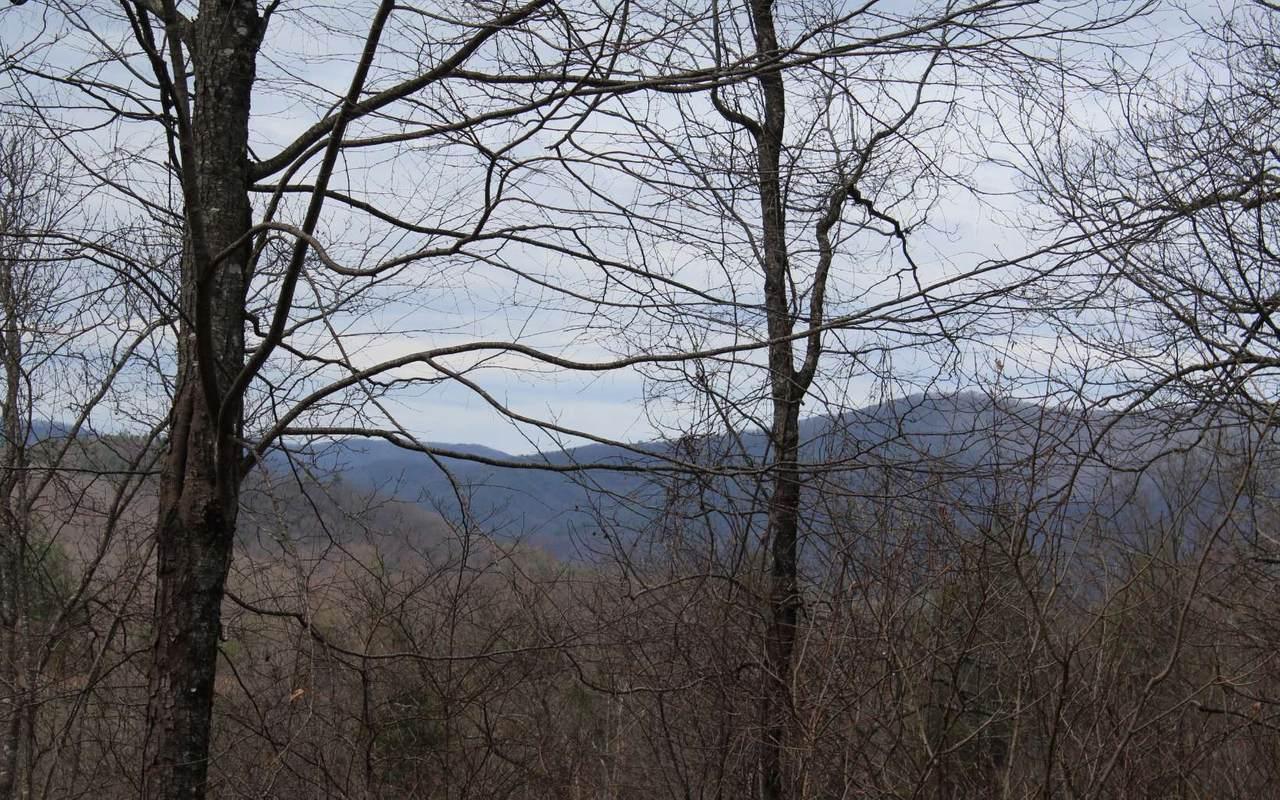 19 N Ridge High Meadows - Photo 1