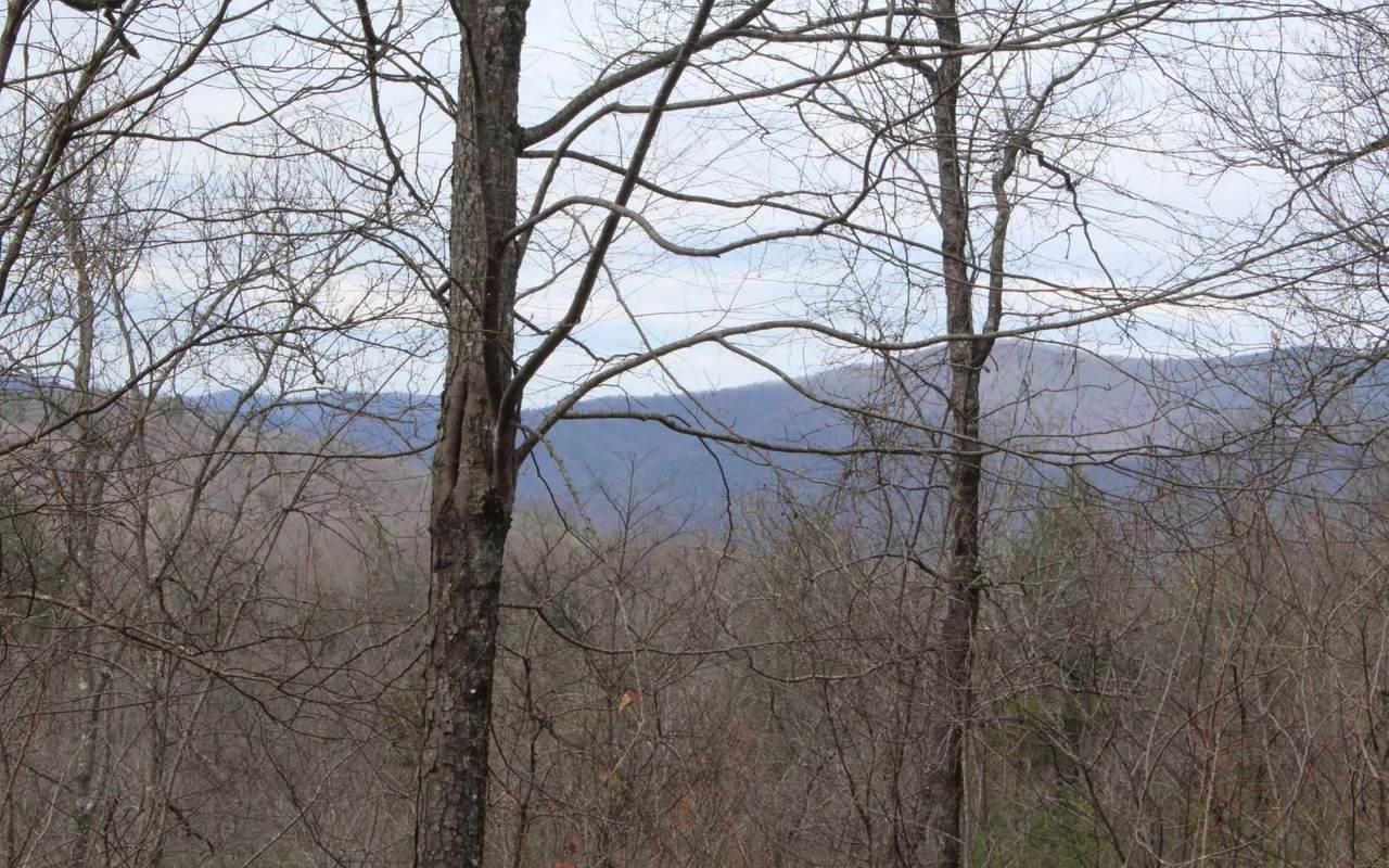 N Ridge High Meadows - Photo 1