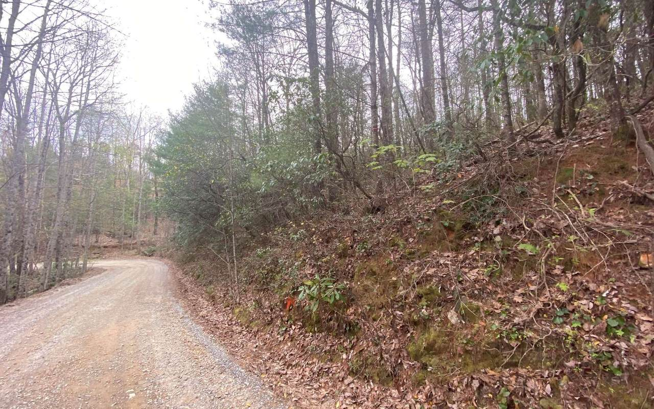 LT 45 Amy Creek - Photo 1