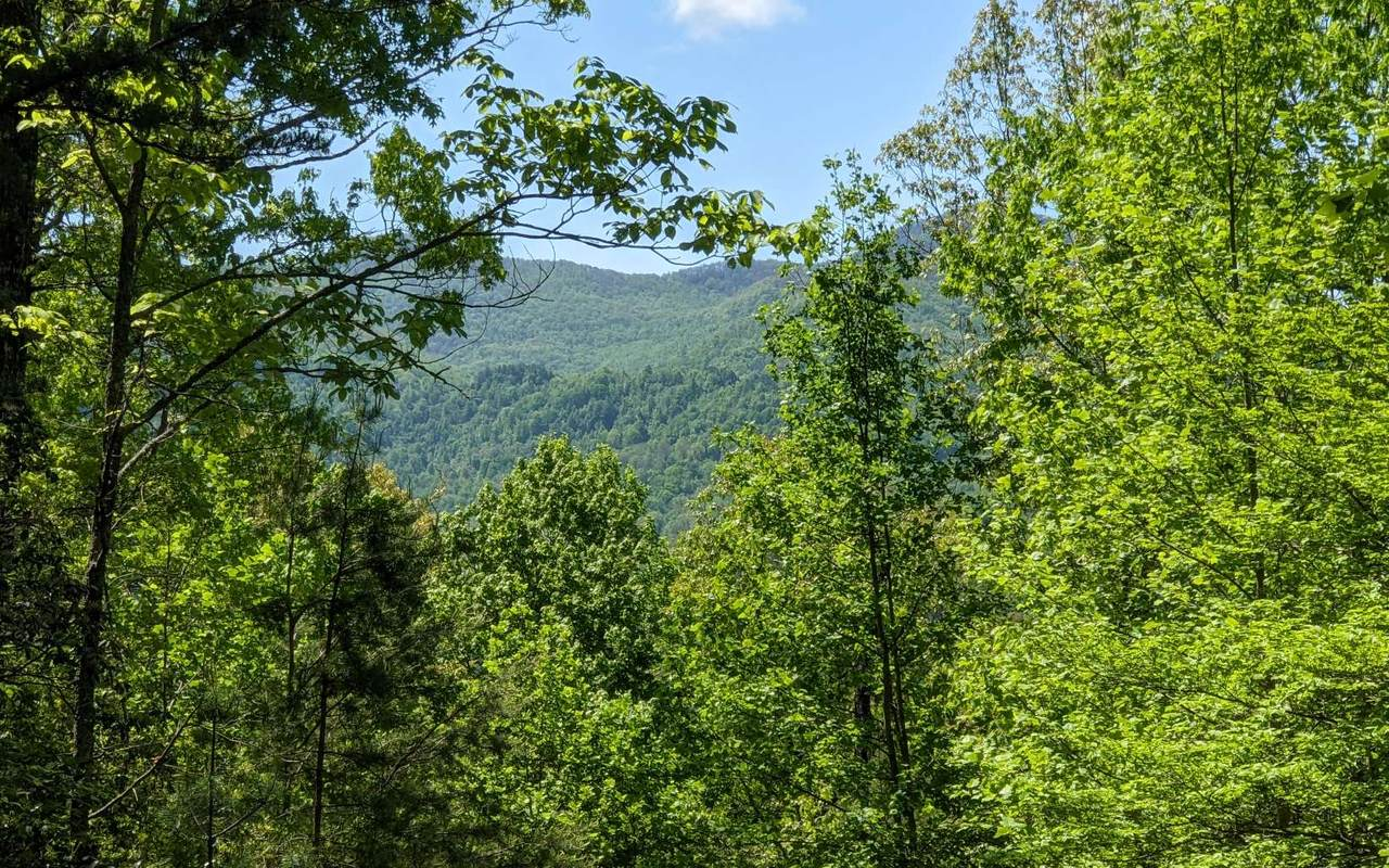 LOT 3 Echota Trail - Photo 1