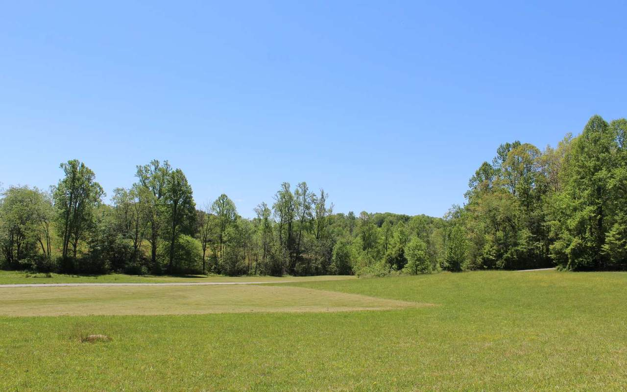 LT48A Licklog Ridge - Photo 1