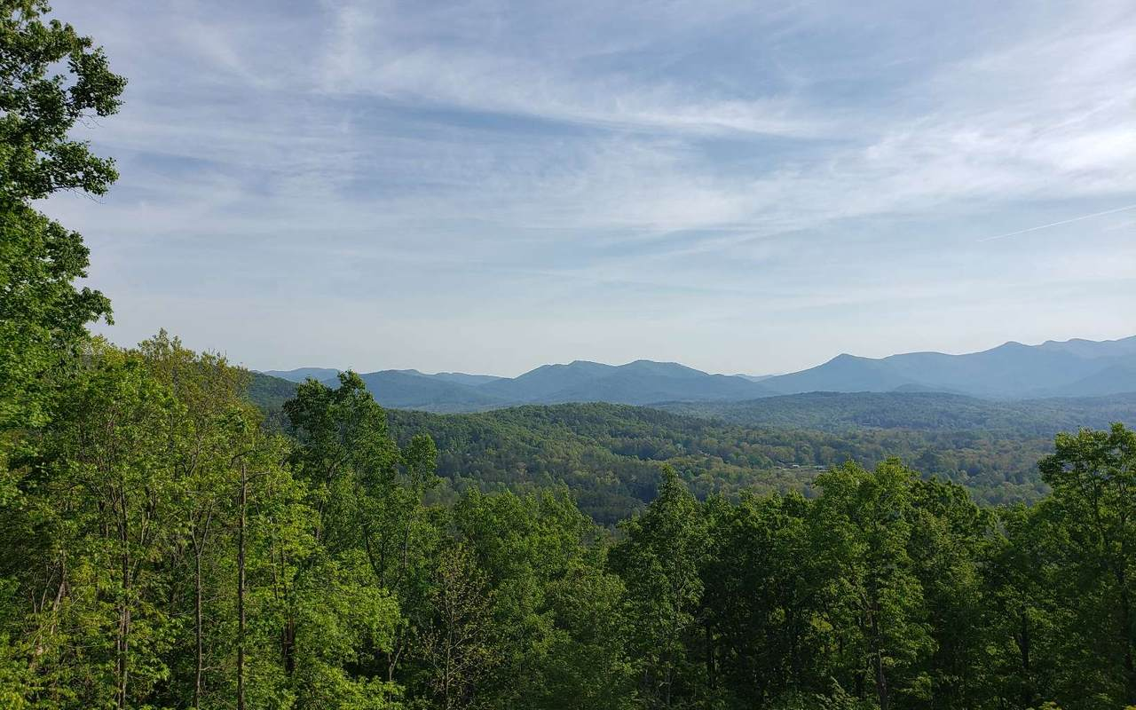 Chestnut Mountain Ro - Photo 1