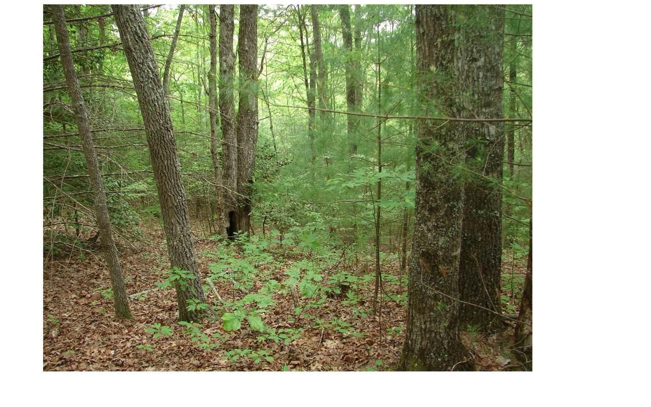 LT 10 Mountain Oak Reserve - Photo 1
