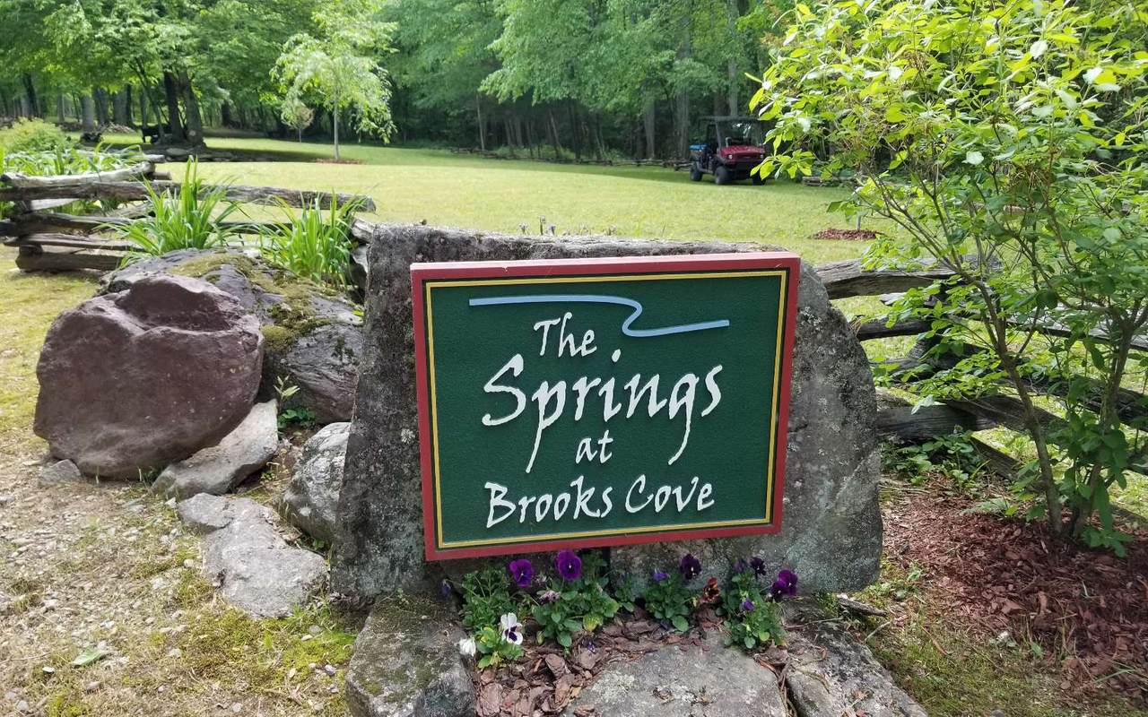 The Springs - Photo 1