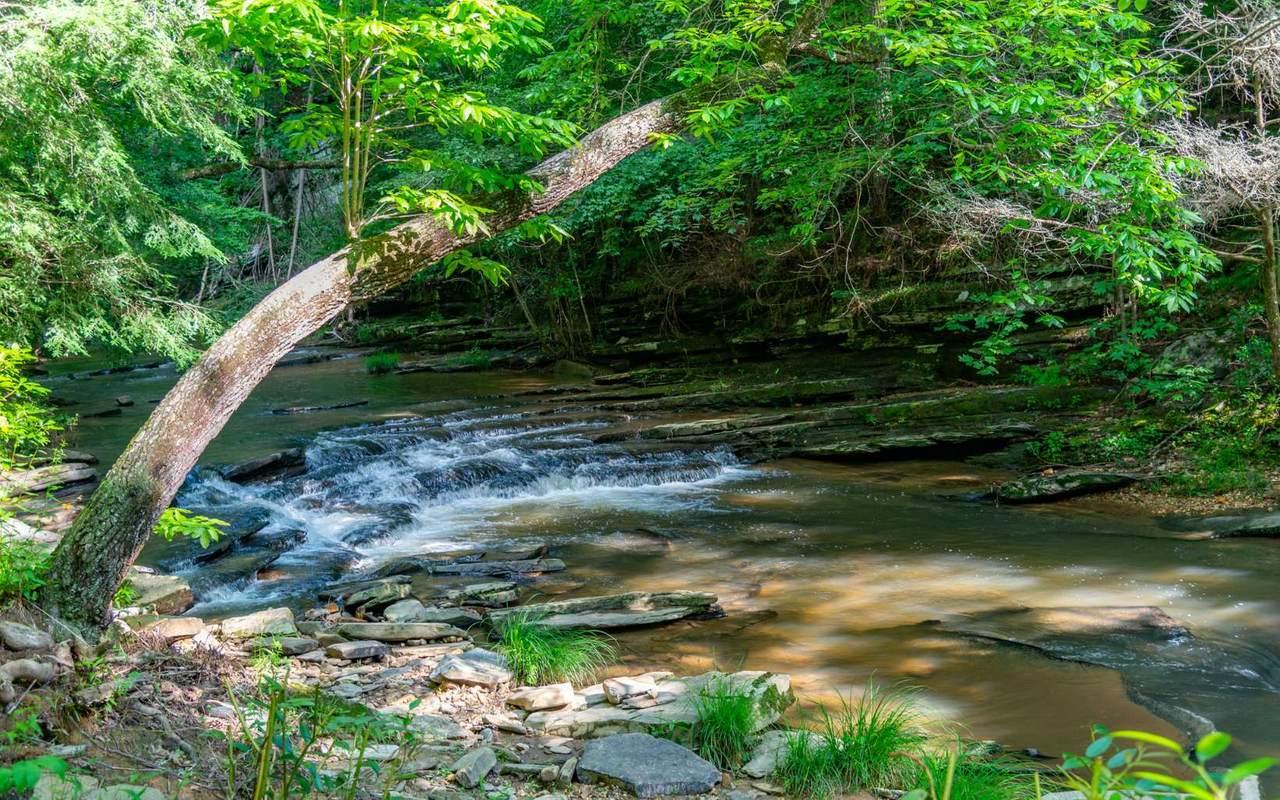 LT 53 Mountain Creek Hollo - Photo 1
