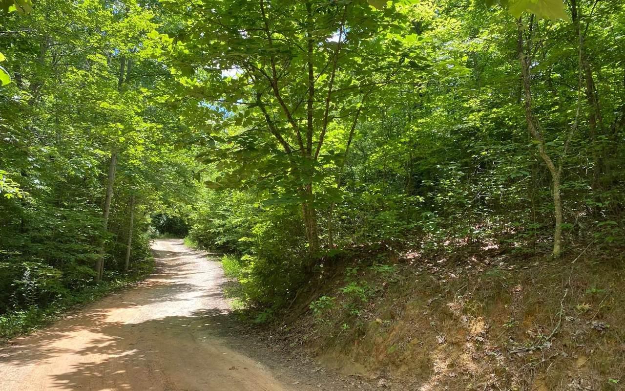 Calvender Road - Photo 1