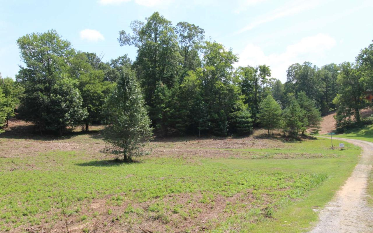 LOT 5 Peachtree Meadows Tr - Photo 1