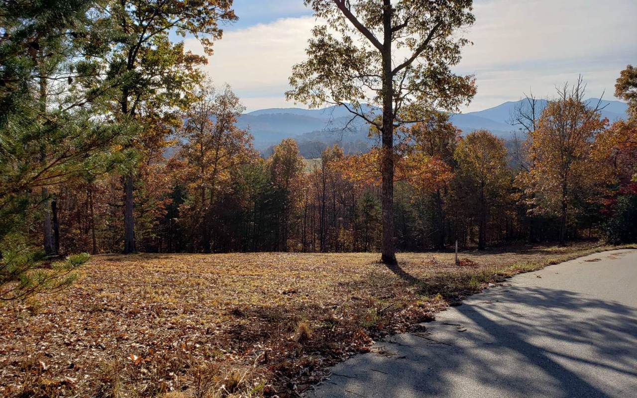 LT32 Standing Meadows - Photo 1