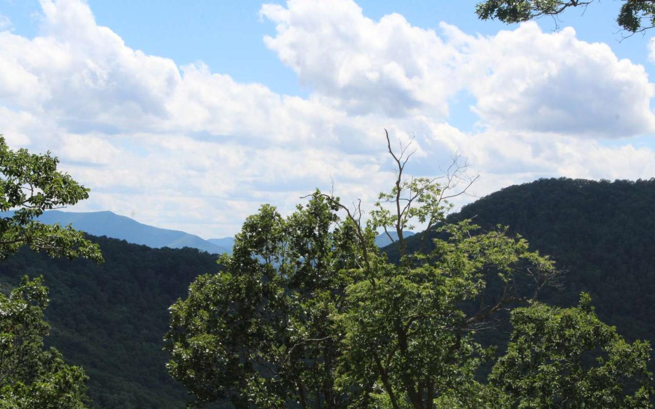 143 Shiloh Ridge - Photo 1