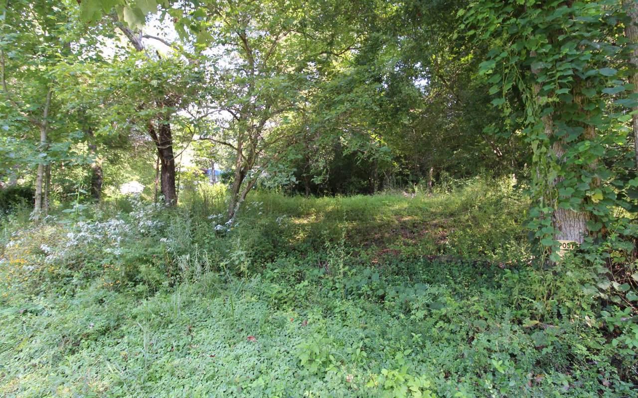LOT 9 Camp Creek Estates - Photo 1