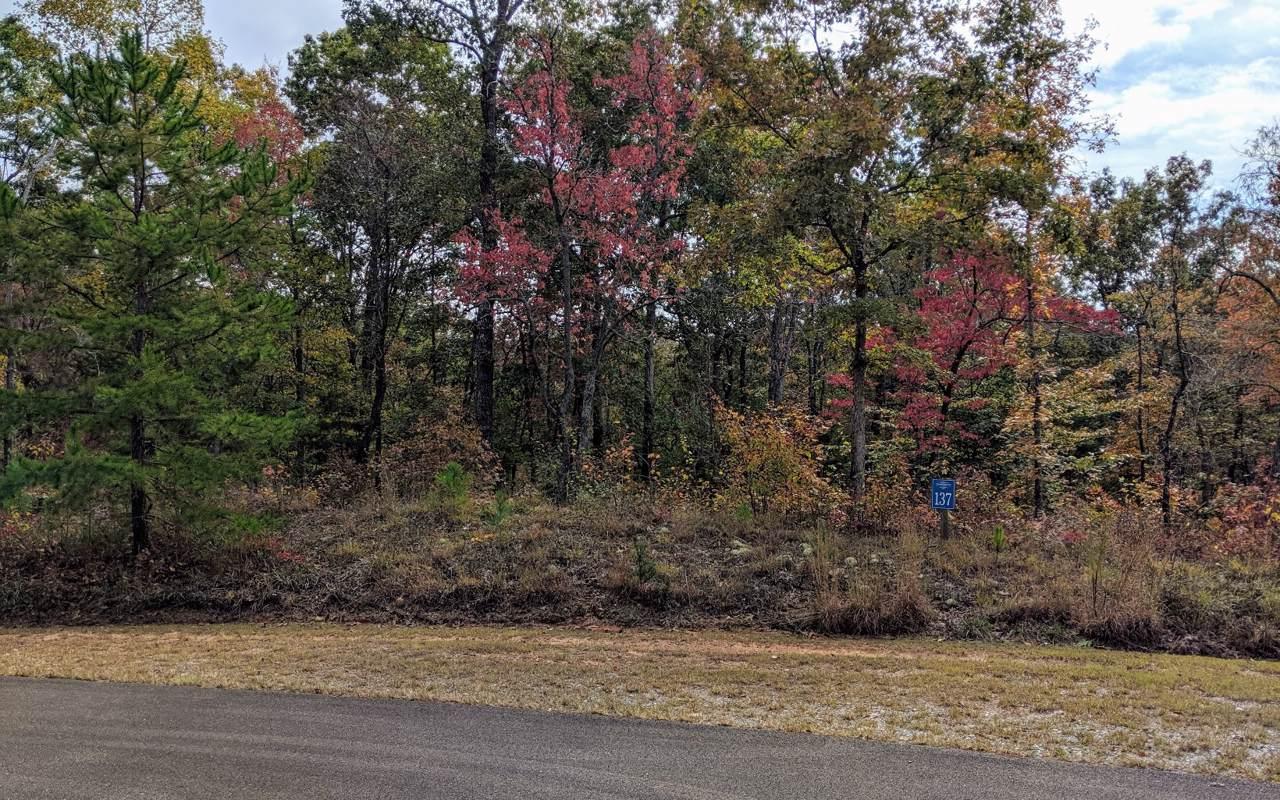 137 Whispering Ridge Ct - Photo 1