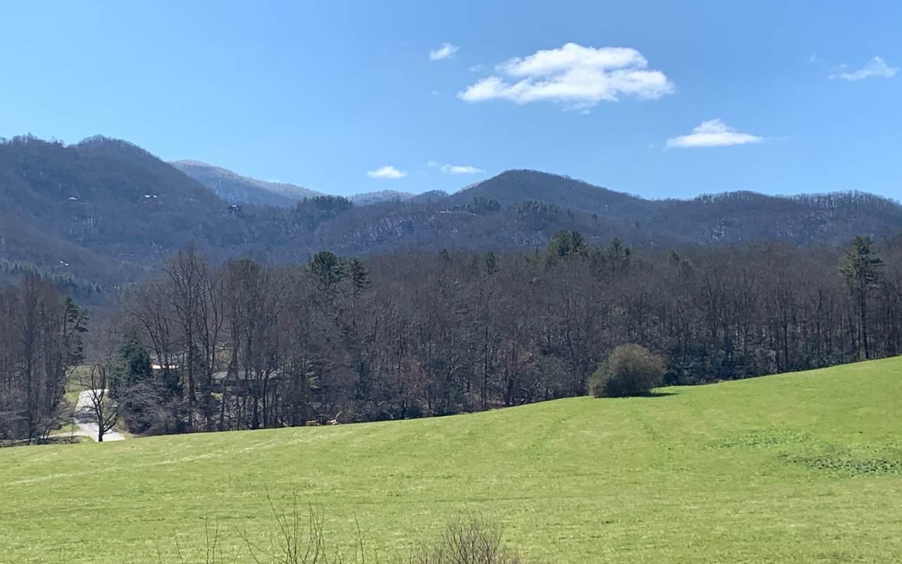 18 Carolie View - Photo 1