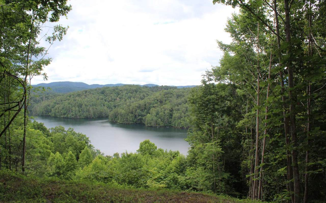 47 Mountain Lake Dr - Photo 1