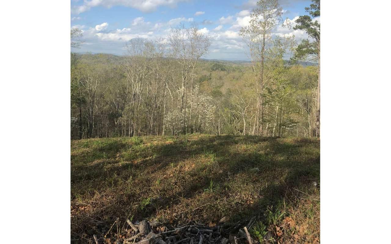 1416 Foxhound Trail - Photo 1
