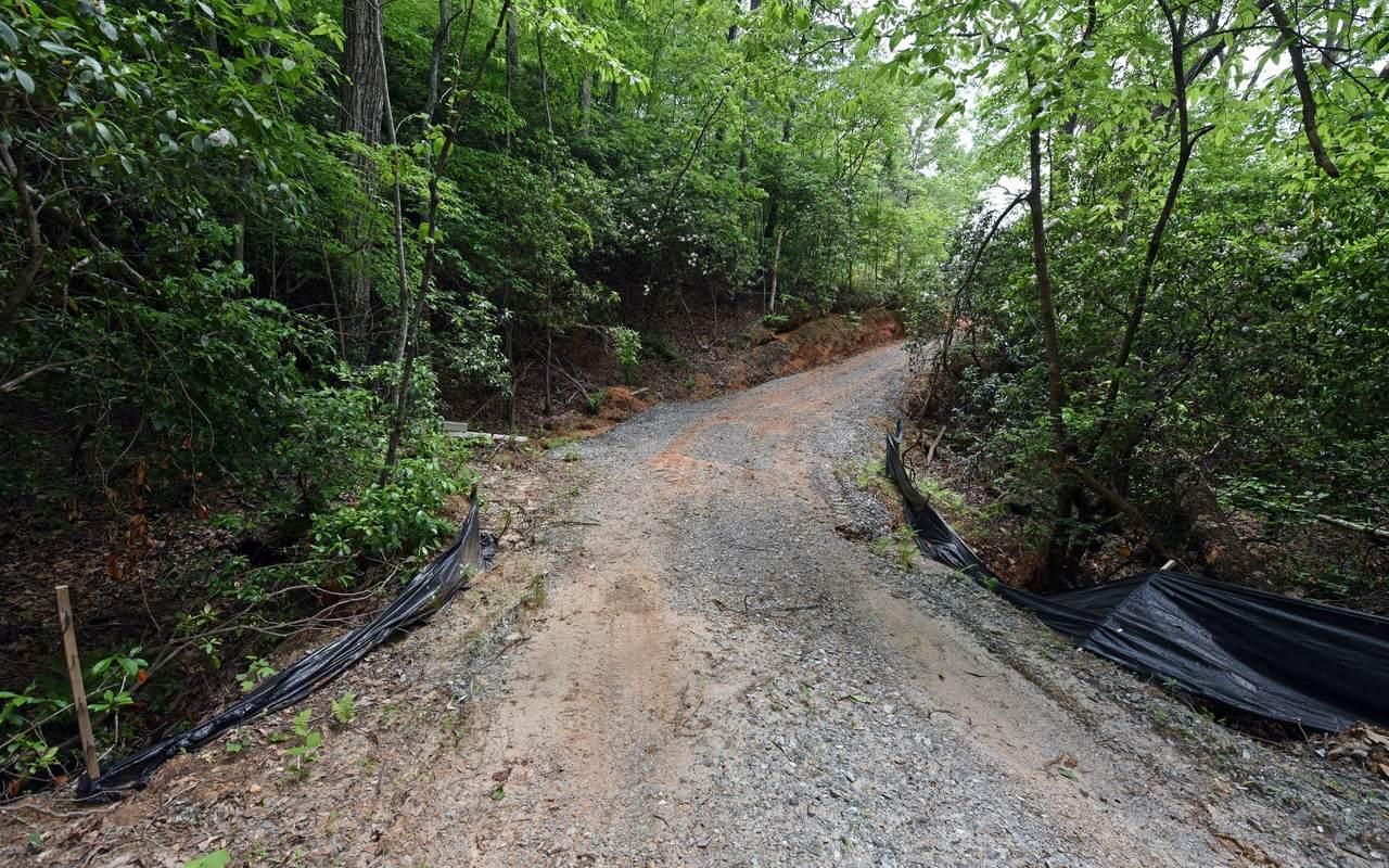 Wolf Mountain Estate - Photo 1