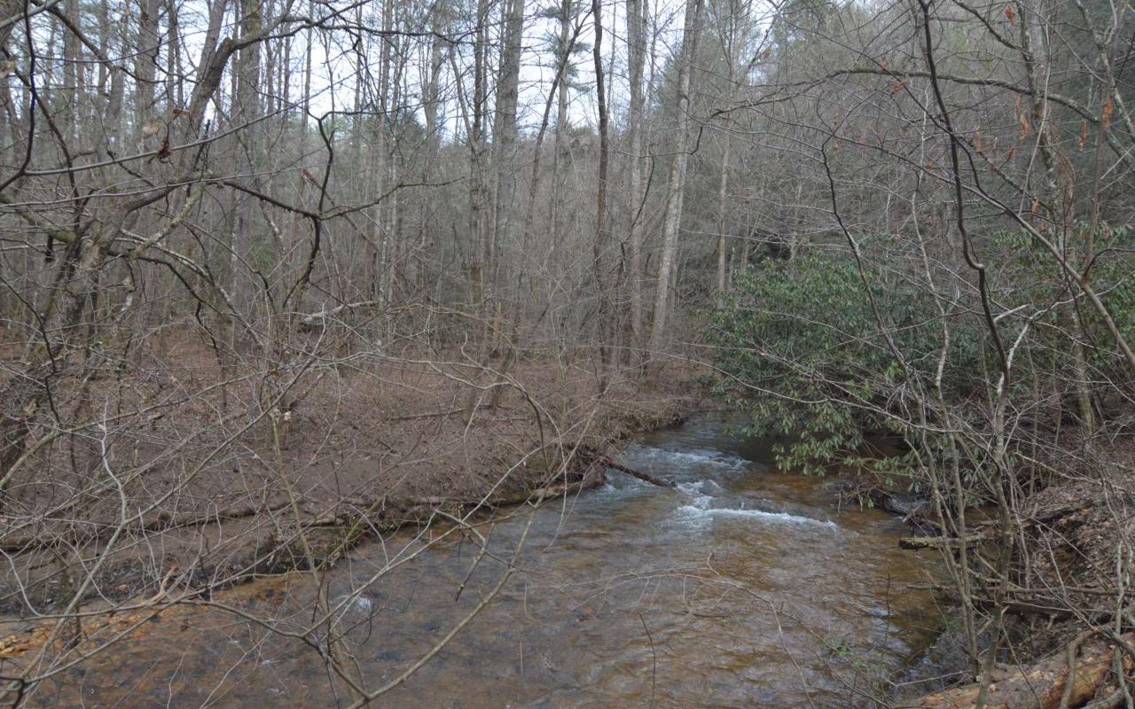 37+AC Mountaintown Trail - Photo 1