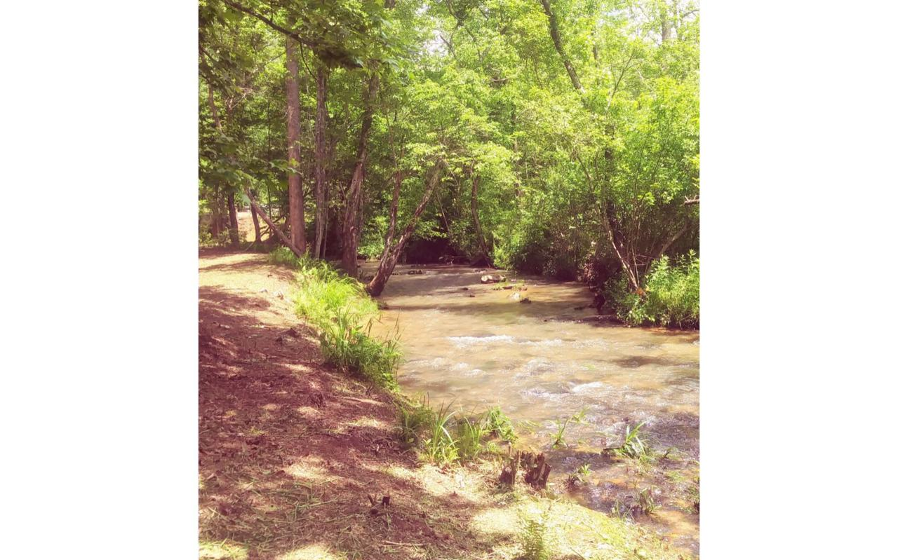 L 38 Wolf Creek Preserve - Photo 1