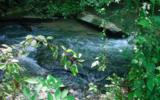 24 Boulder Creek - Photo 1