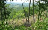 20 AC Harris Ridge Road - Photo 3
