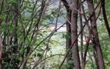I5 Crockett Mountain - Photo 8