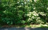 LT 5J Ashe Branch View - Photo 9