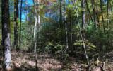 37+AC Mountaintown Trail - Photo 12